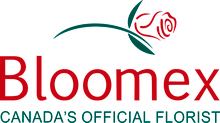 BloomEx discount codes